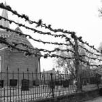 Dutch terms – begraafplaats and kerkhof