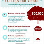 How Software Errors Corrupt Our Trees