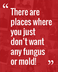 There are places where you just don't want any fungus or mold