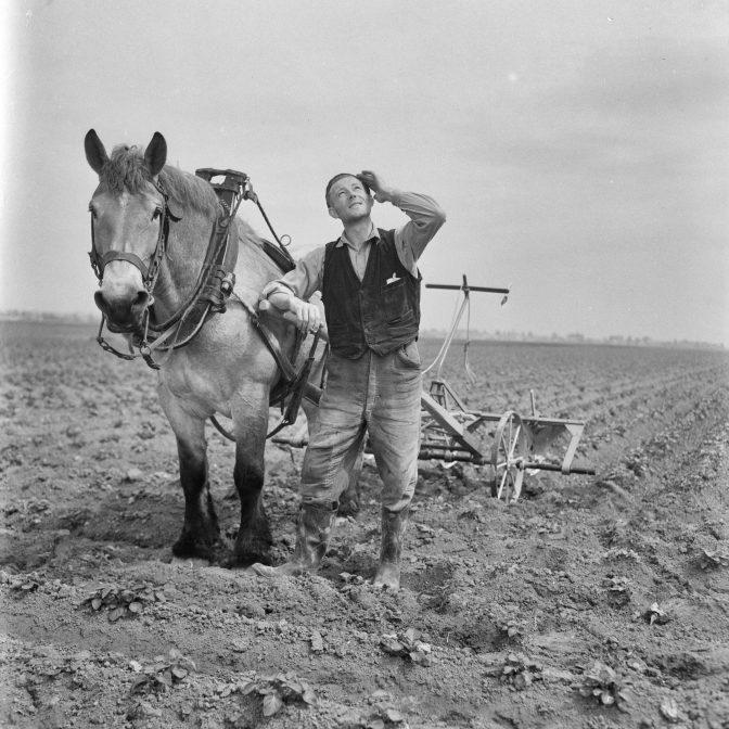 farmer on the land