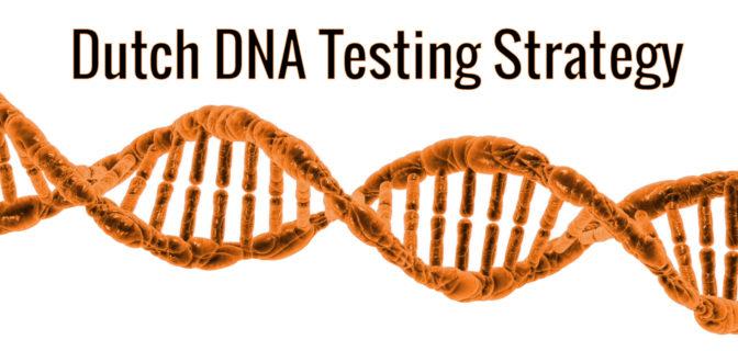 Dutch DNA testing strategy